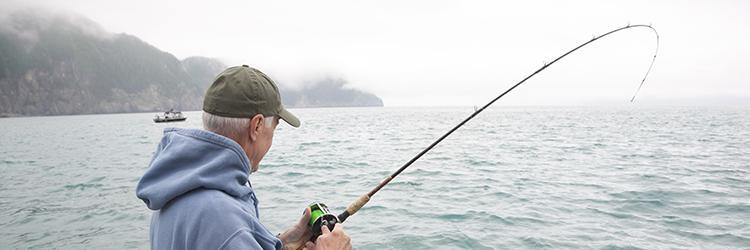 Alaska Balık Temizleme İşleri