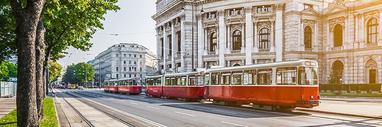 Viyana üniversiteleri için yeni kayıt dönemi 1 Şubat'da başladı.