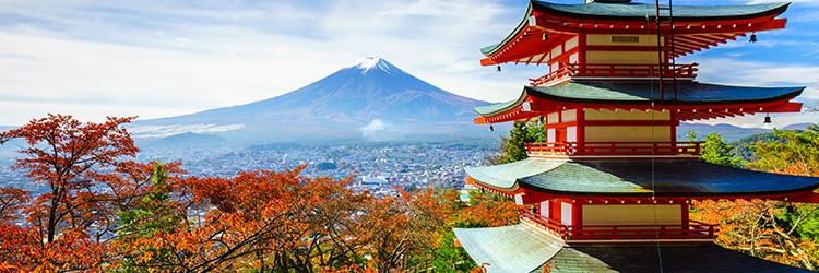 Learn & Travel Japonya
