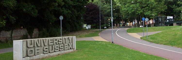 Sussex Üniversitesi