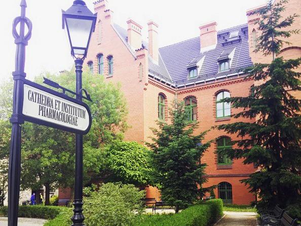 Wroclaw Tıp Üniversitesi eğitim