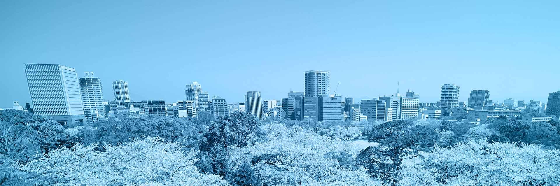 Fukuoka Dil Okulları